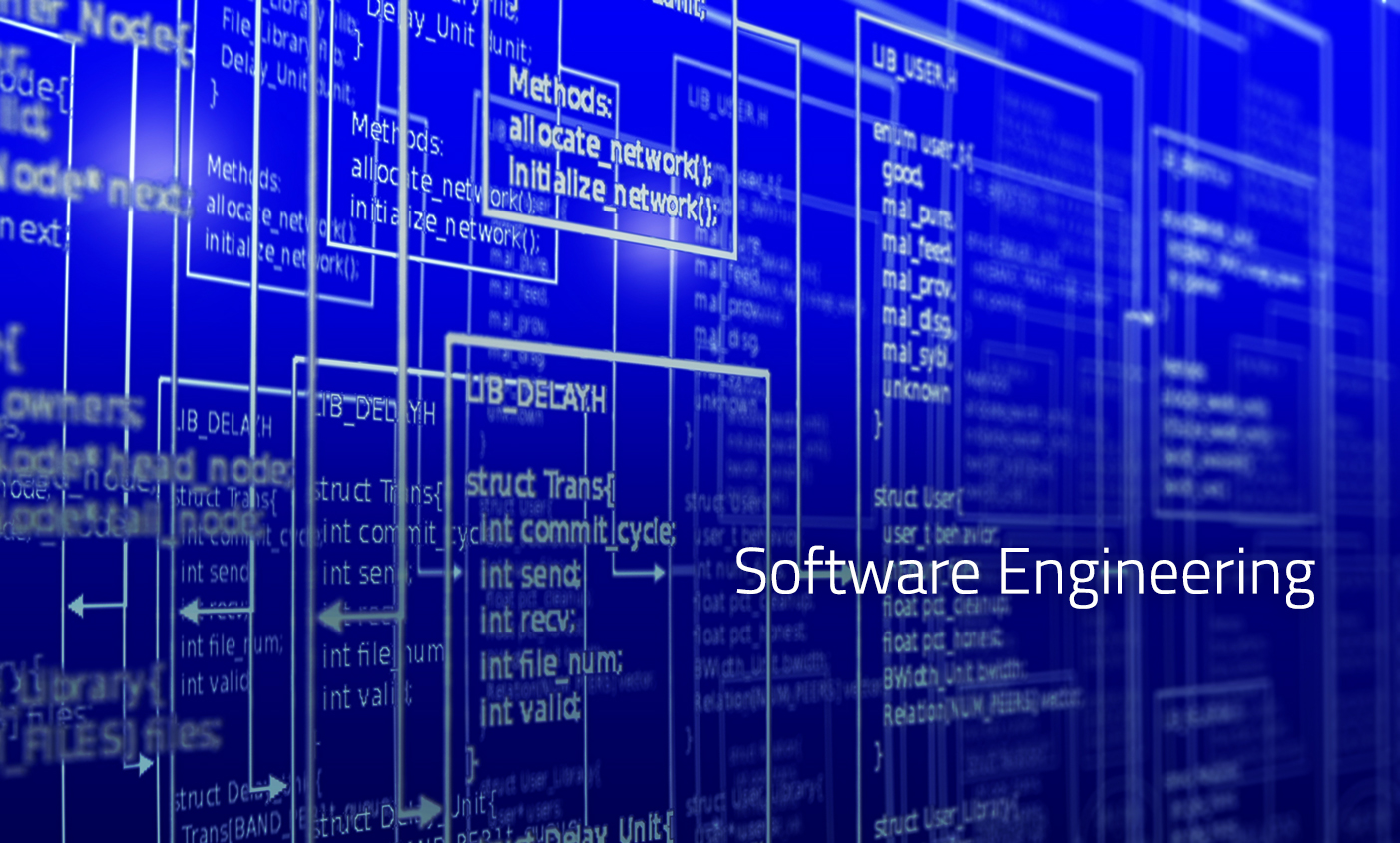 Department of Software Engineering